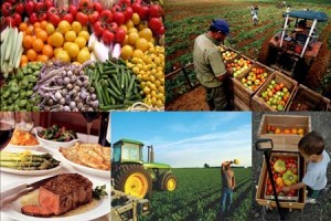 Local Markets and Quality agricultural Products: Identifying Successful Marketing Strategies