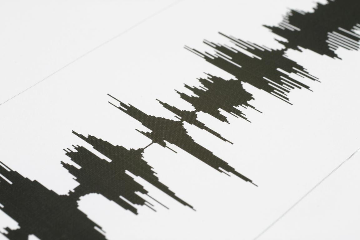 σεισμική δόνηση