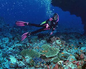 diving_alonissos