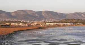 υγρότοπος Βουρκαρίου