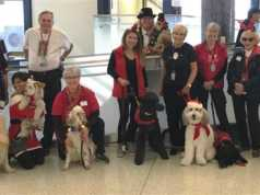LAX's popular PUPs therapy dogs