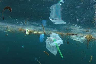 Πλαστικοί ωκεανοί  Το ΕΚ υποστηρίζει την απαγόρευση πλαστικών μέχρι ... d1c2454643f