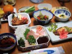 Japan Gastronomy Tourism