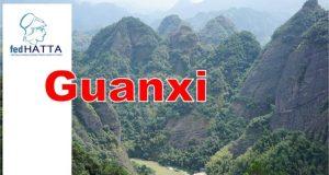 FEDHATTA: Τα τουριστικά γραφεία γεφυρώνουν Ελλάδα και Κίνα - Η περίπτωση της περιοχής Guangxi
