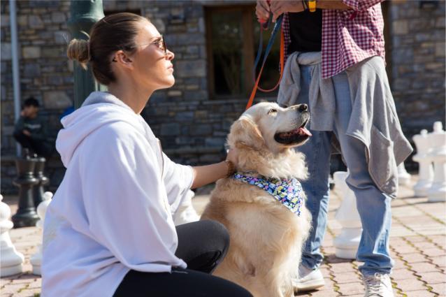 Το Dog Weekend επιστρέφει για 3η χρονιά στο Elatos Resort & Health Club στις 15-17 Νοεμβρίου!